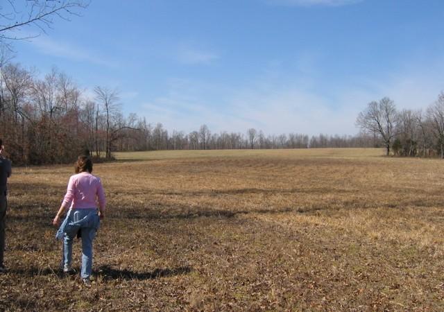 The Anne field!