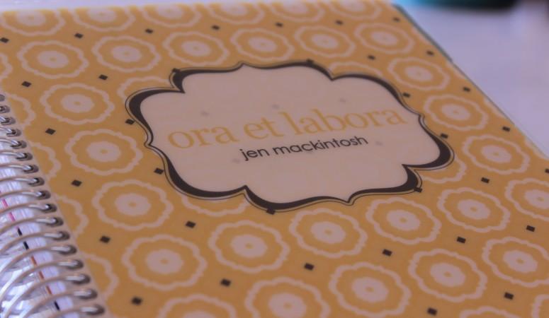 Erin Condren 2015 Life Planner Review