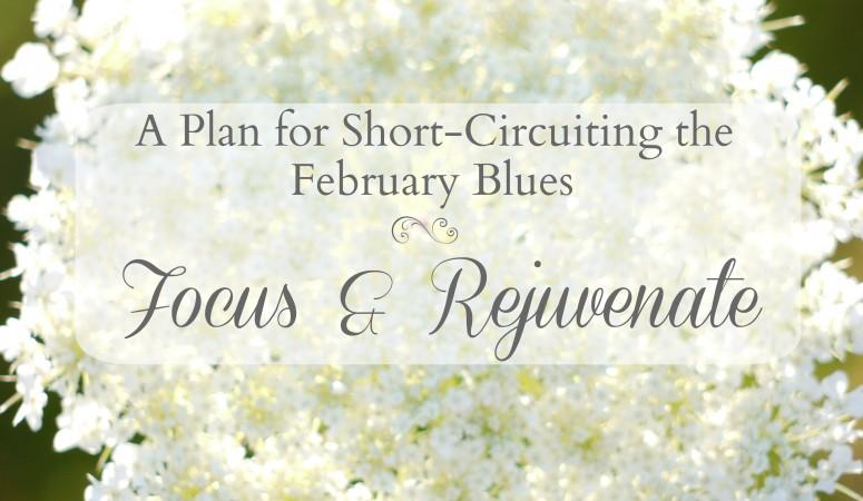Focus and Rejuvenate