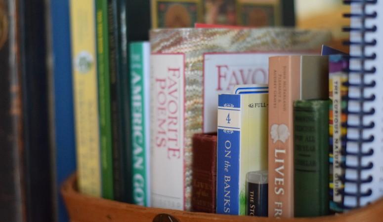 Morning Basket – Term 2 Plans & Printables