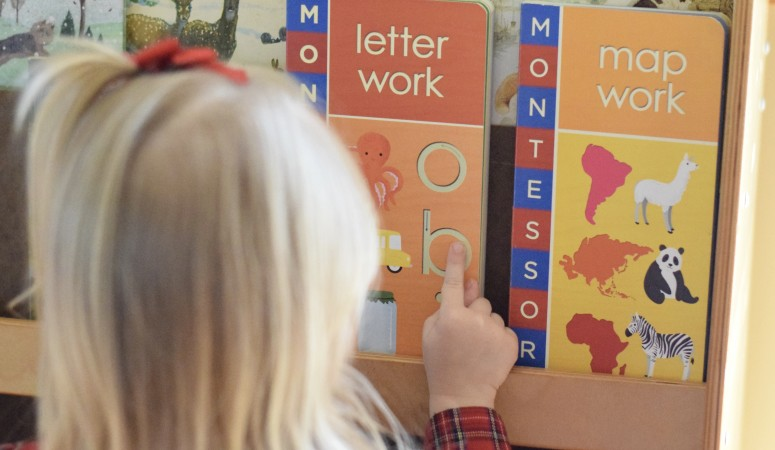 New Montessori Resources for Littles