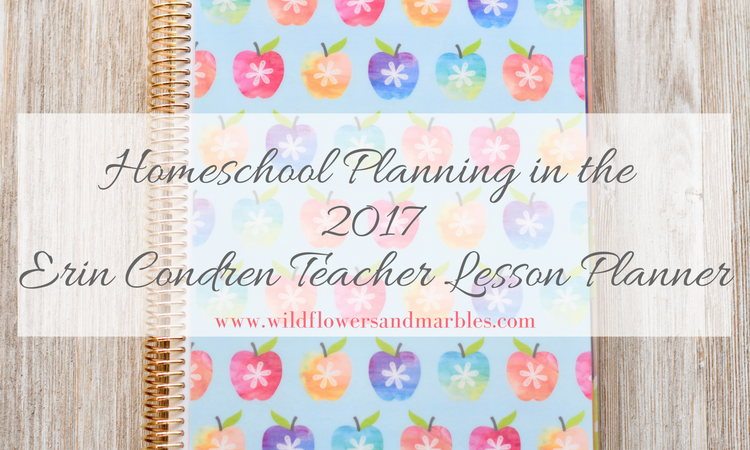 Erin Condren Teacher Planner as Homeschool Planner – Video Walk Through