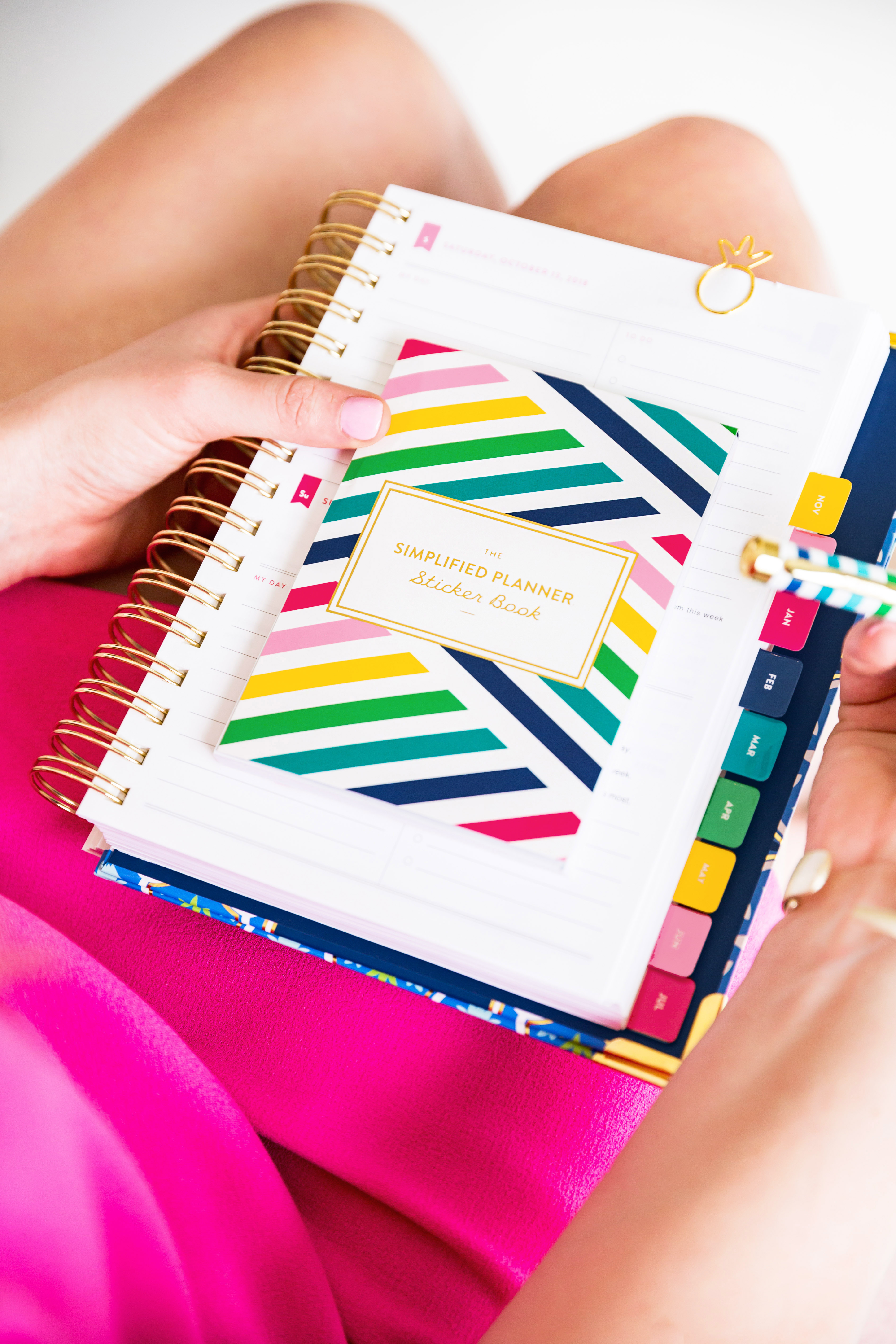 picture regarding Emily Ley Coupon Code called Simplified Planner 2018-2019 Planner Overview How I System