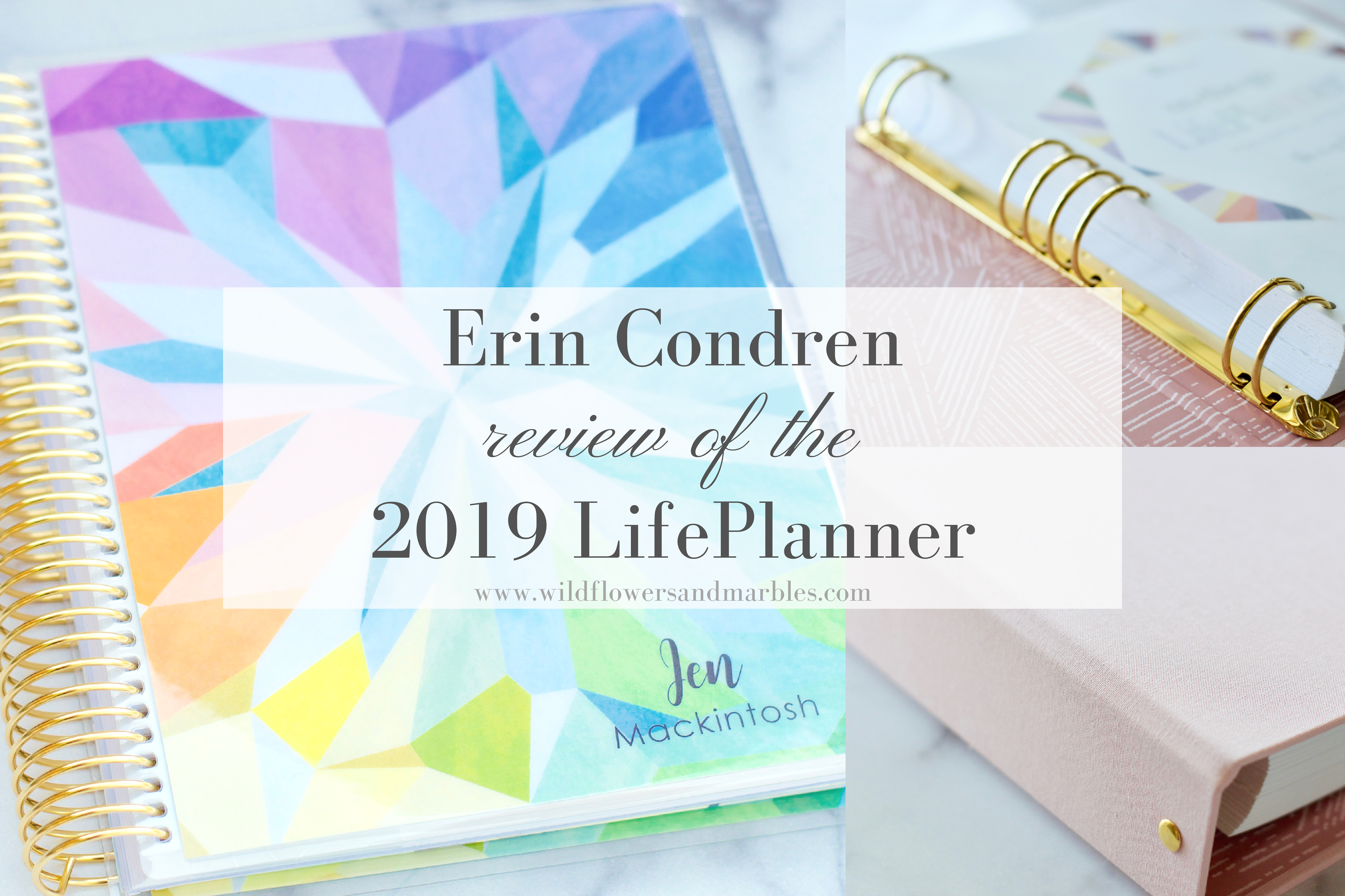 image relating to Erin Condron known as Erin Condren Existence Planner 2019 Evaluation Wildflowers and